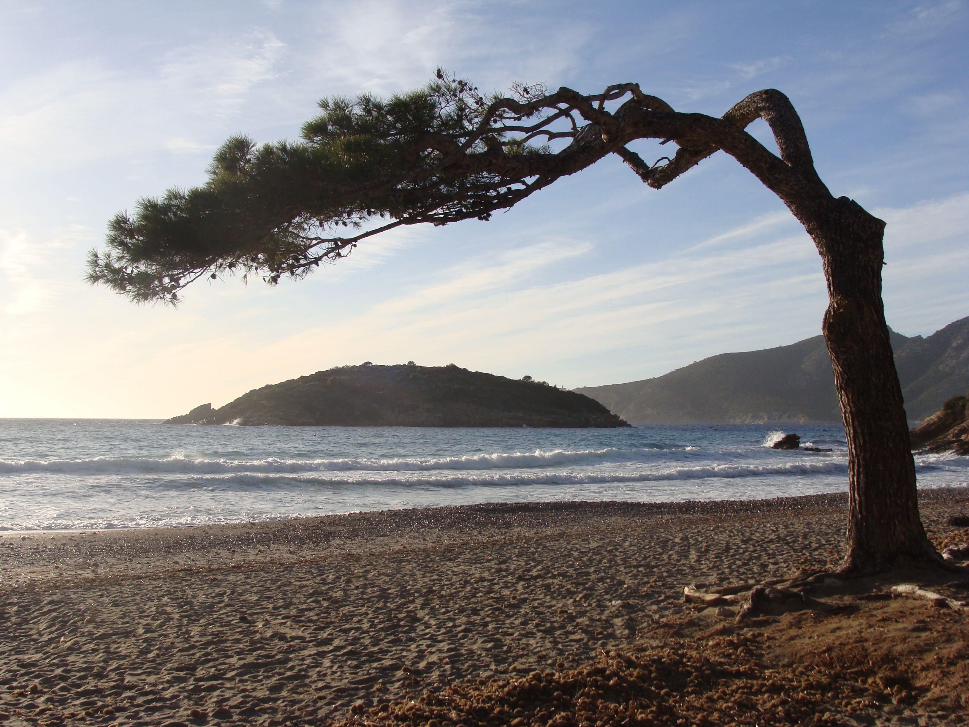 Strand und Meer auf Mallorca