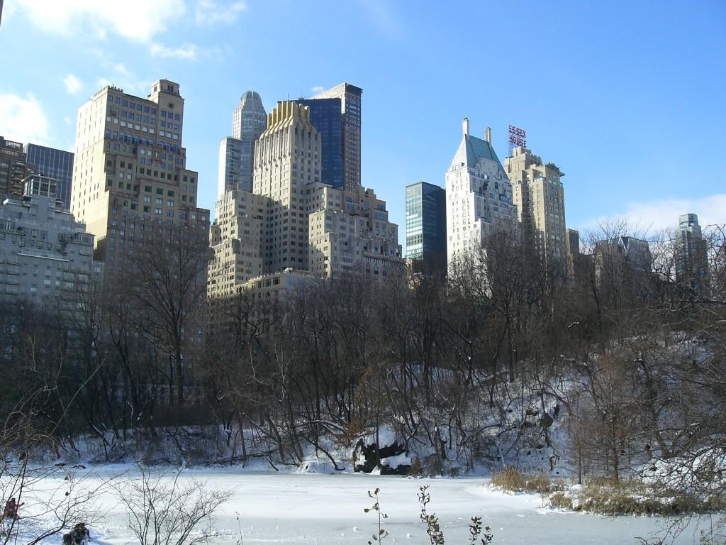New York 28.12.10 - 01.01.11 041