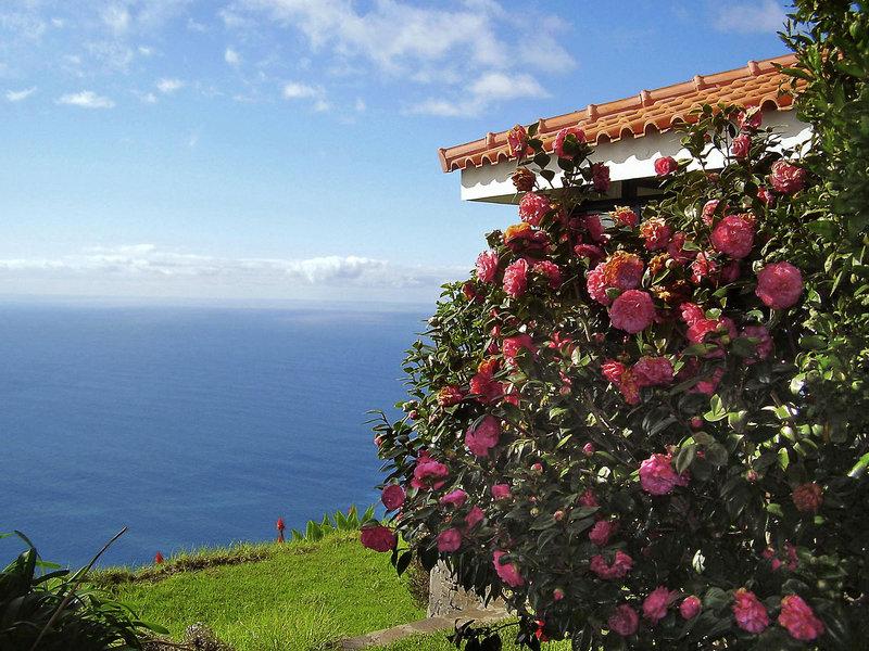 Jardim Atlantico Blick