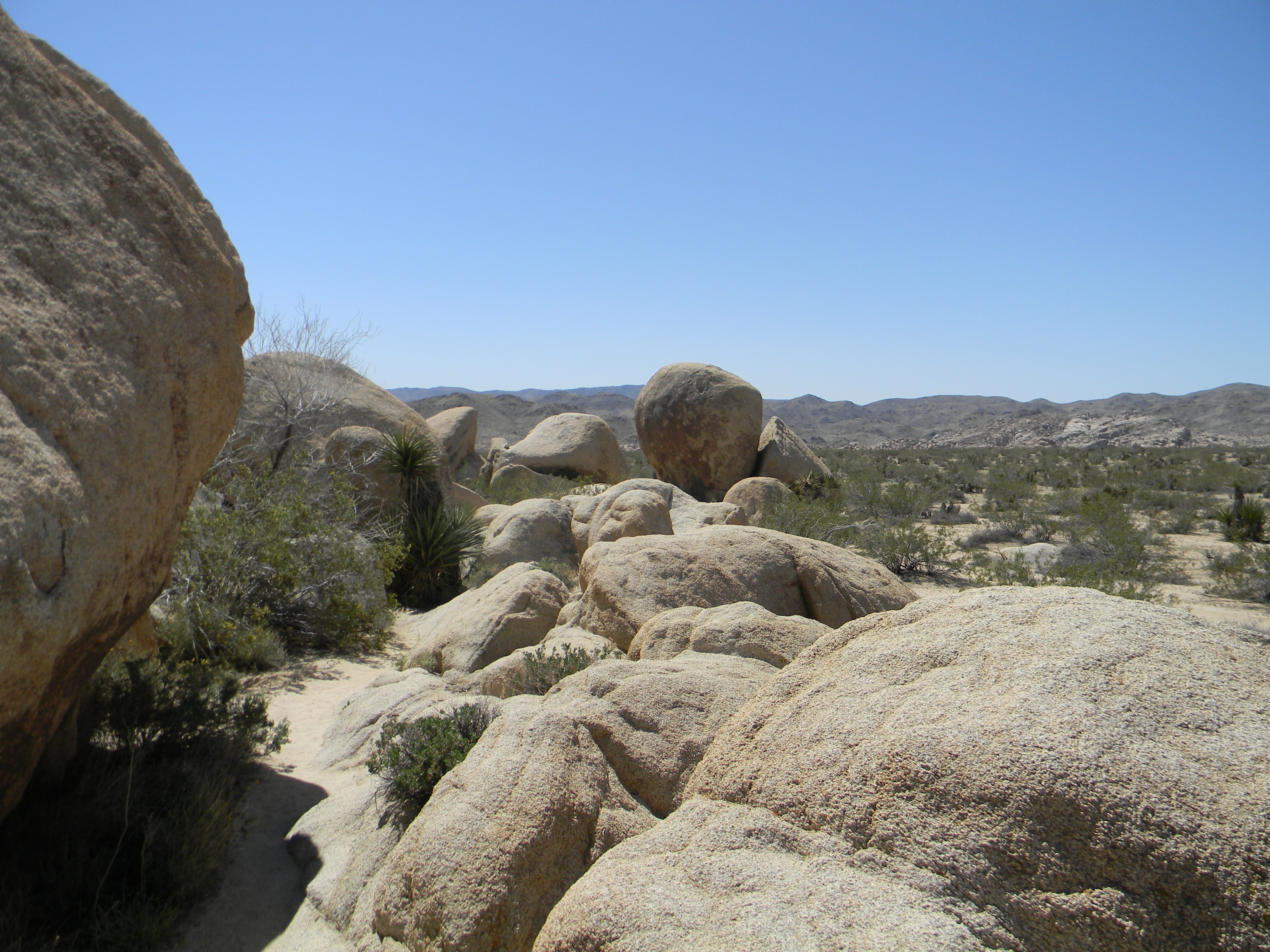 Steinformationen im Joshua Tree Nationalpark
